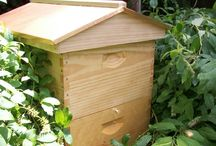 Beekeeping in Action! / Honey bee hives are the perfect addition to any home or business that is interested in improving local gardens, making local honey, and bettering your environment.
