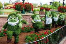 Disney Gardens / by Barbara Zorn
