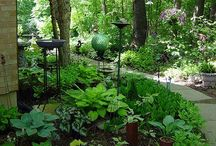 Plants & Gardens / Add some color to your life