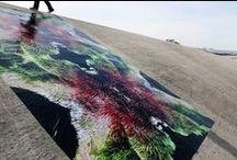 JAP Artist Residency X Tijuana / www.ayalaparis.com | www.ayarchitecture.com