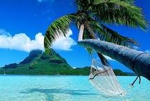 Travel / ...where I took my first step ...where I said my first word ...where I took my first breath.