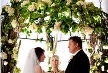 arches & chuppahs & backdrops, oh my! / tropical and formal wedding arches, chuppahs and backdrops