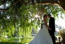 Garden Weddings and Country Weddings / Beautiful and romantic garden and country weddings