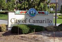 Camarillo#SoCal#Ventura Cty#66 yrs / by Kathie Morris Wysinger
