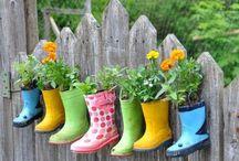 How Does Your Garden Grow / by Meg Burnham Bateman