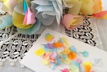 DIY & Crafts / by Sela Amelinda