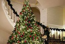 Decoración Navideña / Christmas decoration.