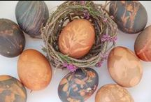 Crafts / Halloween, Christmas, Easter and everyday projects I created for HGTVGardens.