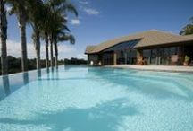 Swimming Pools / Swimming Pools by Mayfair Pools