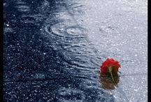 Rain & Storms / Rain, drizzle, storms