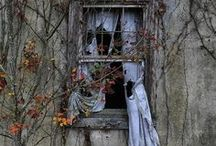 Forgotten, but not gone / by Flanamama
