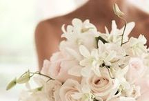 Wedding bouquets / A varied selection of bridal bouquets.