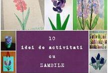 Zambile / Hyacinths craft