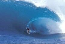 Rugged Hawaii