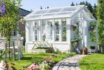 La cabane au fond du jardin / by Danièle