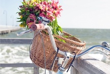 Au jardin ... bicyclettes fleuries