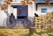 Amish Splendor / Simplicity / by Renee Carrier