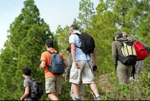 Walking in Spain / Walking in Spain is a real treat for all kinds of travelers, here we celebrate the Andalucia great outdoors and invite you to come along and see more http://tomatours.com/walking