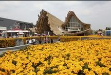 """#Expo2015   China Pavilion / """"Land of Hope, Food for Life"""": a 4,590 square meters national Pavilion made up of 5 exhibition areas. By Studio Link-Arc + Tsinghua University    """"Land of Hope, Food for Life"""": un Padiglione nazionale di 4.590 mq di superficie suddivisi in 5 aree espositive"""
