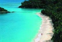 I need a vacation!!!! / by Diane Jarett