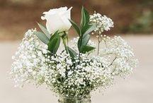 Pretty Things :: Flowers