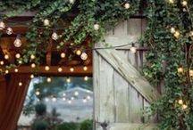 Home :: Garden / Pretty garden inspiration.
