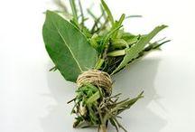 En cuisine ... Les herbes aromatiques