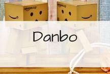 Danbo / Les photos de danbo