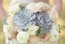 Wedding: Bouquets & flower arrangements