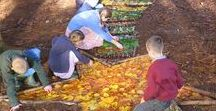 Autumn Outdoor Fun for Children / Autumn inspired crafts and outdoor activities for children