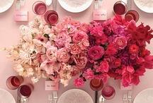 Colour Theme; Pink