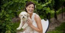 4-Legged Wedding Guests / Everyone should have their best friend at their wedding - even if they have four legs.