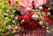 Flowers Decoration by Flover & Bisotti Home/Wedding Vintage 2014