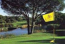 Golf / Healthy Sport, 100% Natural and Wellness's Developer!!
