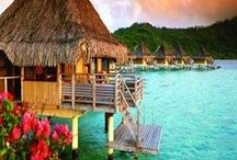French Polynesian / The Best in French Polynesian!!