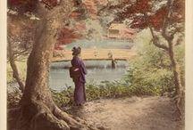 Early Photography of Japan / Raccolta delle prime fotografie giapponesi, realizzate in albumina e colorate a mano.  Fotografie che riprendono i canoni delle stampe policrome dell'Ukiyo-e (colori, soggetti e tecniche)