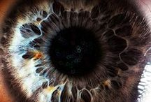 Psychedelic Images / #Psychedelic Images  #Elevation of Consciousness