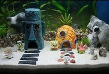 AMAZING - aquarium|aquascaping / Lovely ideas to arrange and take care of your aquarium