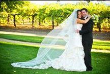 Celebrate Weddings!