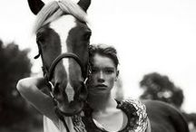 Dreamin of Horses Collection Inspo / Pre Fall Mini Collection http://lykkewullf.com