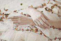 Disney | Sleeping Beauty