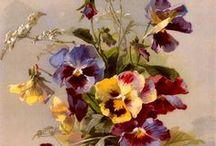 kwiaty, flowers / kwiaty, flowers