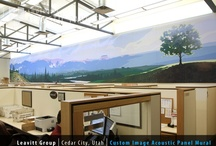 Office and Work Spaces Acoustic Treatment / A proper acoustic environment is crucial to efficient work. This board showcases some of our favorite office acoustical treatments by Audimute.