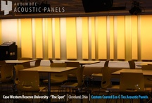 Institutional Design / Acoustic treatments for large spaces require a special approach: super-effective treatments are required for super-sized acoustical problems; plus architecture and design have to be taken into account.  These are a few of our favorite success stories.  Acoustical Treatment by Audimute.