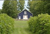 Local Landscapes / Experience bucolic southern Washington County in upstate New York.
