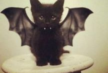 ♥ Halloween ♥ / Inspirations Halloween, idées décoration, images vintages