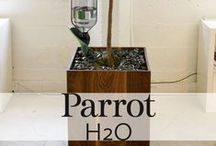 Parrot Flower Power H2O / Parrot Flower Power H2O: the smart sensor that waters for your plant while you are away.