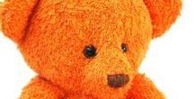 Zesty Orange 2
