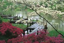 Dock Ideas / How to build Floating Docks, Deck Ideas all along the Water..