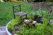 Fairy Gardens, Hobi Bahçeleri / fairy garden ideas hayal bahçeleri hobi bahçe malzemeleri hobi bahçe tasarımları hobi bahçe sera hobi bahçe evleri hobi bahçe seraları hobi bahçe yapımı hobi bahçe evi